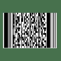 codul PDF-417