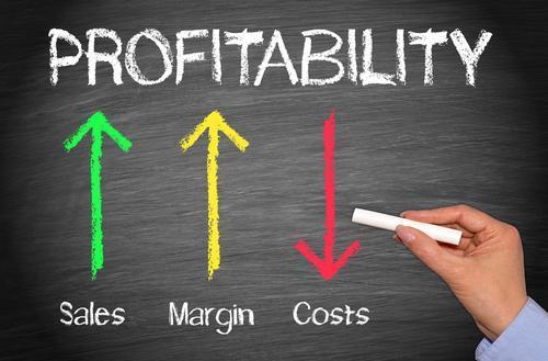 profitabilitate pe client